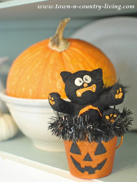 Fraidy Cat for a Halloween Decoration