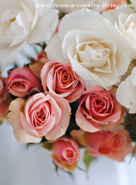 Sprays of Pink and White Roses