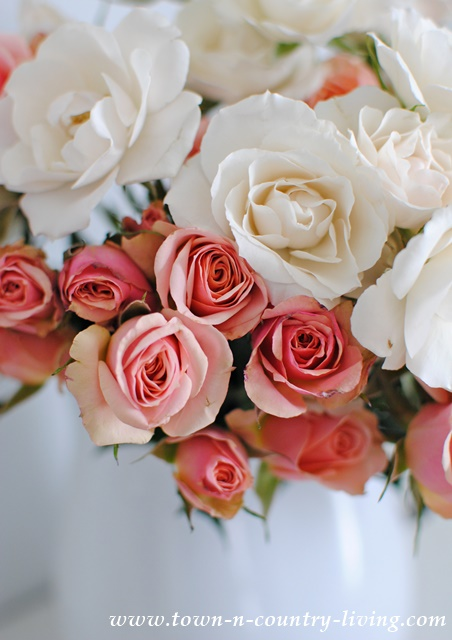 Spray Roses in Pink and Cream