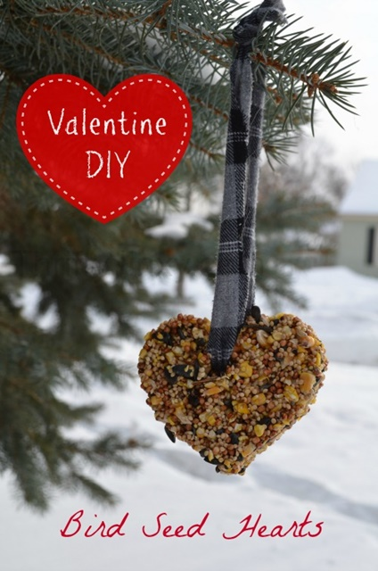 Valentine's Day Bird Seed Heart Feeders