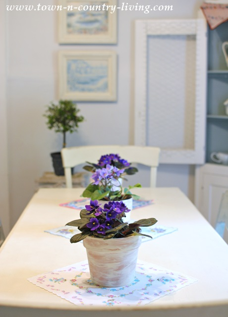 Trio of African Violets makes simple centerpiece