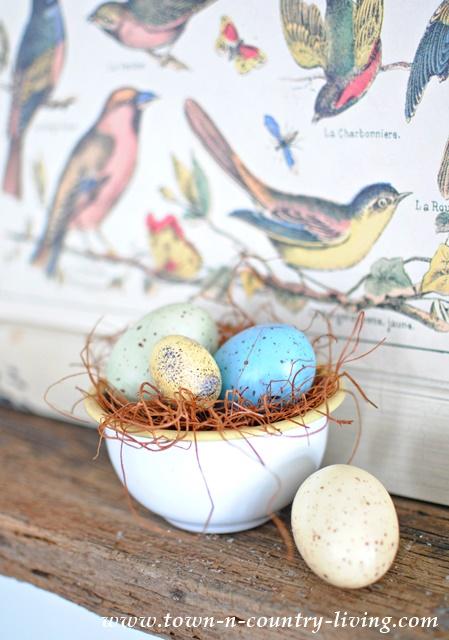 Bird Nest in an Enamel Bowl
