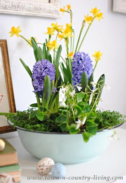 DIY Spring Bulb Centerpiece