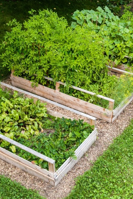 How to turn lawn space into a raised garden