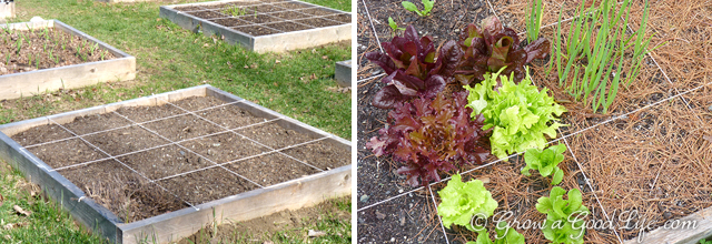 How to create a grid square foot garden