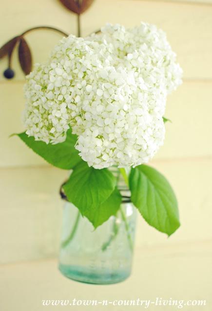 Simple Summer Bouquet. Hydrangeas in Blue Atlas Jar