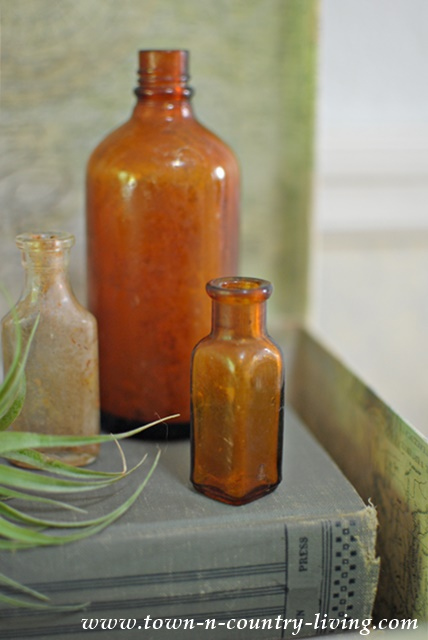 Vintage Brown Bottles Vignette