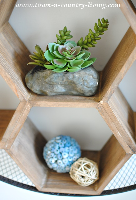 Succulents on a Honeycomb Shelf. Easy wall decor.