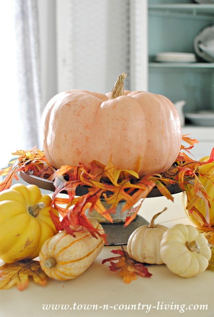 Thanksgiving Centerpiece with Gourds and Leaves